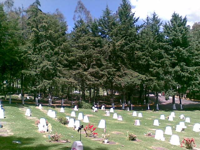 Jardín Loma del Fresno fosa dúplex Gayosso Parque Memorial