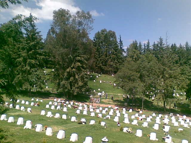 Jardín Los Encinos OC Parque Memorial fosa dúplex